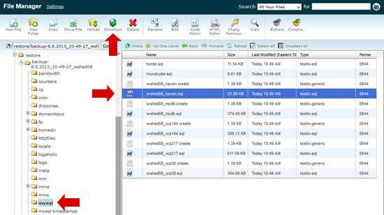 Download the SQL dump file