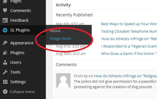 image zoom options