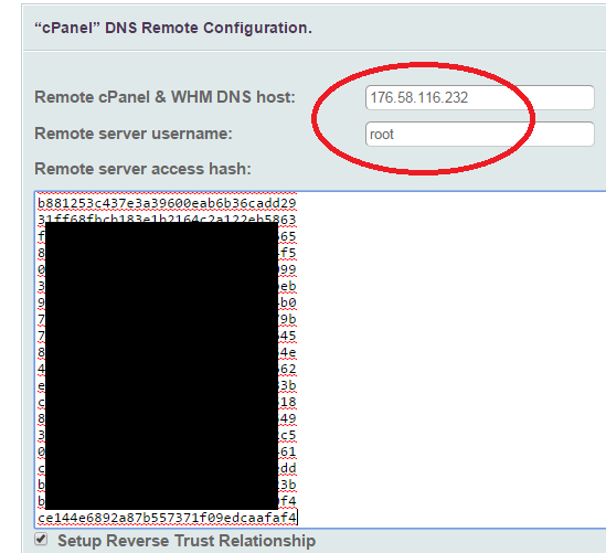 configure remote DNSONLY