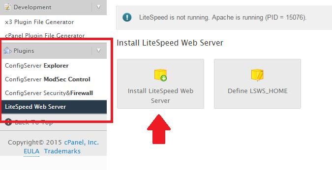 install litespeed web server