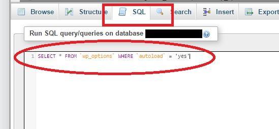 get autoload queries