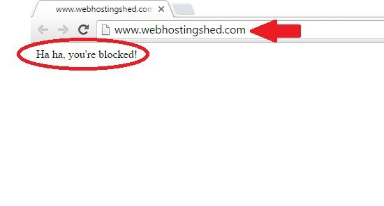 referrer blocked