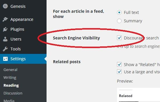 search engine visibility off